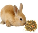 Dry Food and Mixtures