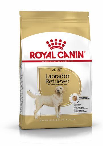 Labrador Retriever Adult 3 Kg Royal Canin