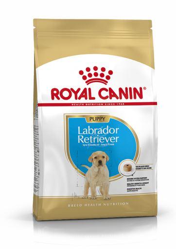 royal-canin-labrador-retriever-junior-12-kg