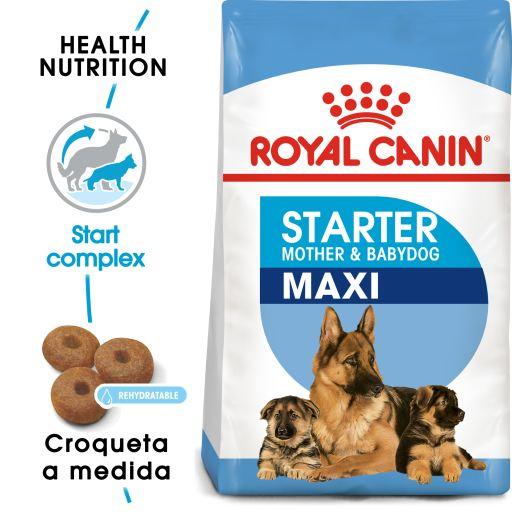 Royal Canin Cibo Secco per Cani Giant Starter