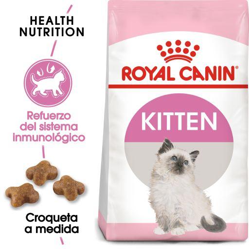 Kitten Cibo per Gattini