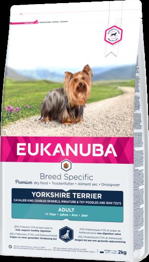 Yorkshire Terrier 2 KG Eukanuba