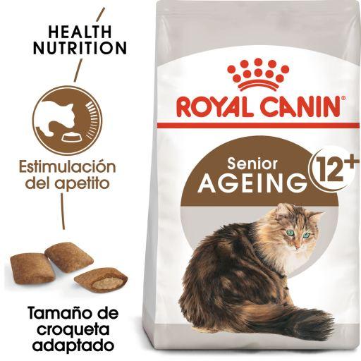 Feline Ageing +12