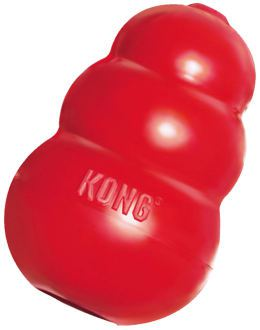 kong-interactive-toy-for-ferrets