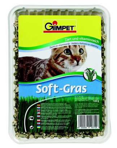 Herbe pour Chats 100 gr Gimpet