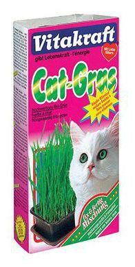 Herbe pour Chats Cat Grass 0.120 Kg Vitakraft