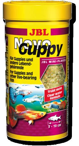 NovoGuppy
