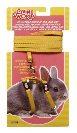 Jaune Nain Harnais Rabbit Living World