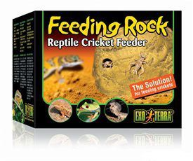 exo-terra-exo-terra-feeding-rock
