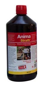 Suplemento Anima-Strath