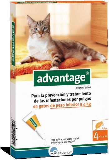 Advantage 40 Pipetas