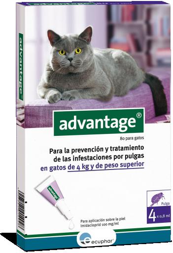 Advantage 80 >4 Kg