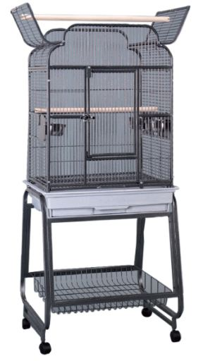 megazoo-perroquets-cage-nairobi-avec-pie
