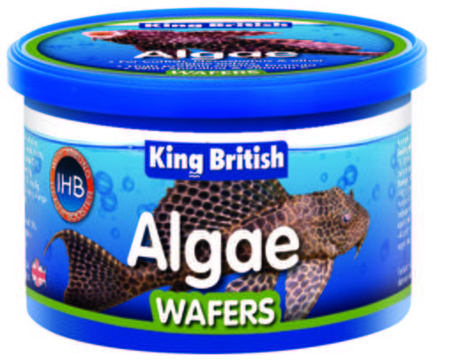 king-british-alguee-wafers-with-ihb-35-gr