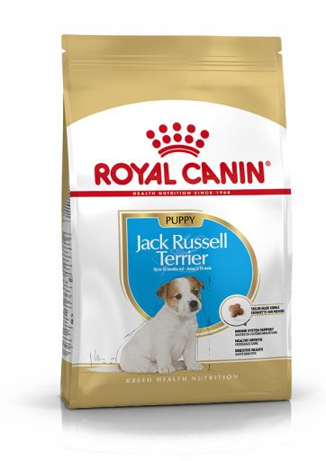 Jack Russell junior 3 Kg Royal Canin