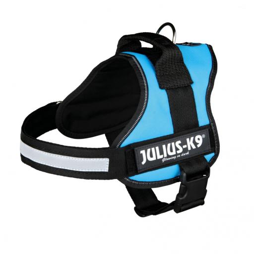 Julius K9 harness Aquamarine