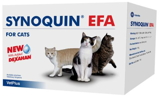 Synoquin Condroprotector Articular en Gatos