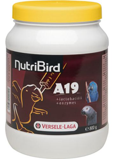 Nutribird A19 P / chicks