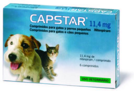 pastillas para parasitos del corazon para perros
