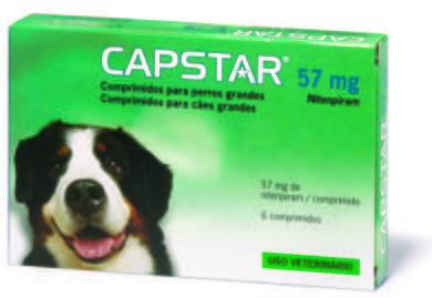 antiparasitarios perros internos