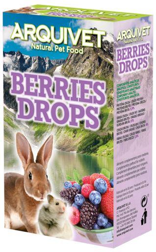Drops avec Fruits de la Forêt 65 Grammes. 65 GR Arquivet
