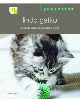 Cute Kitten 1 Unité KNS Ediciones