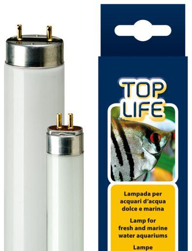 Lampe Aquasky 8W 1.6x28.8 cm Ferplast