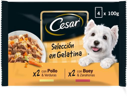 Nourriture humide pour chiens Sélection multiple de mélangées gelée