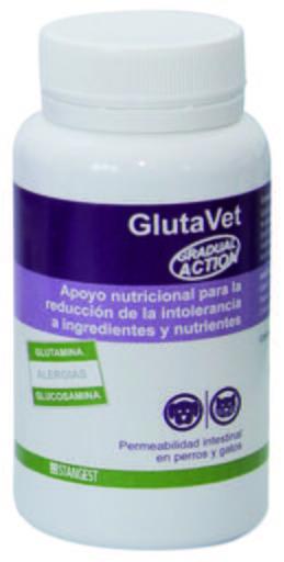 Glutavet 60 Comprimés 60 Comprimés Stanvet