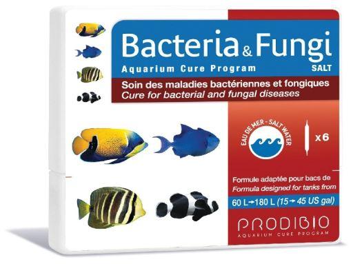 Bacteria & Fungi Saltwater 6 Ampoule Prodibio