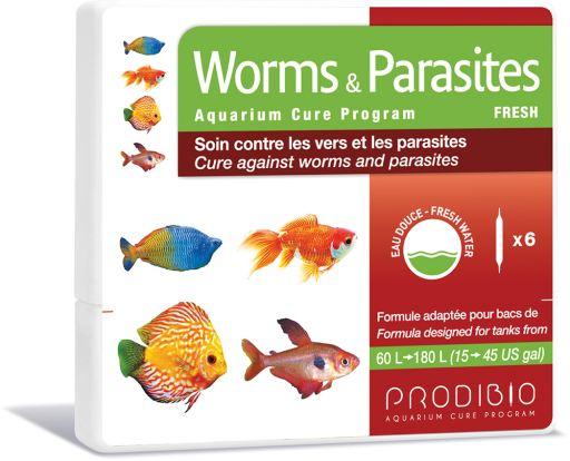 Worms & Parasites Freshwater 6 Ampoules Prodibio