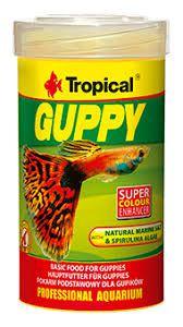 Guppy 100 ml 100 ml Tropical