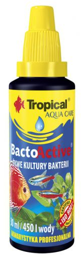Bacto Active Live Bactérie 250 ml 250 ml Tropical
