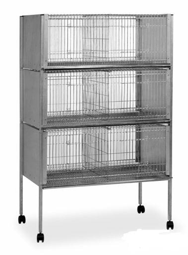 Cage Exposition P-25 (3 Étages) Gaun