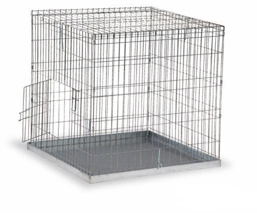 Cage Exposition Oiseaux Moyens 80 X 80 mm Gaun