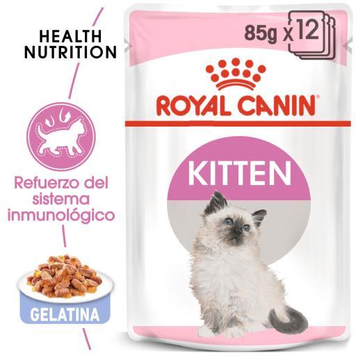 Kitten Comida Húmeda en Gelatina para Gatitos