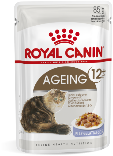 12x85 gr Royal Canin 12+ vieillissement Cat Food humide Gélatine
