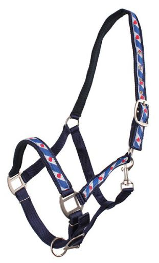 Blue Bridle Full lined Frisian QHP