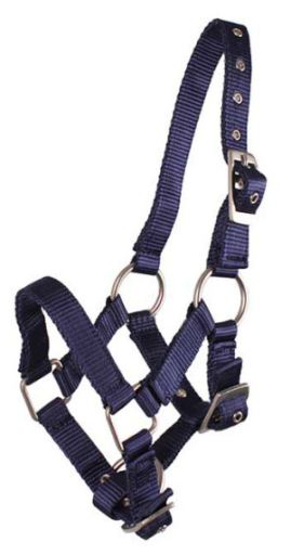 qhp-ronzal-navy-pony-full-pony-04