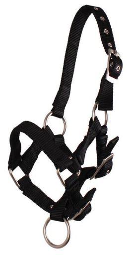 qhp-ronzal-black-pony-pony-shet-02, 11.50 EUR @ miscota-fr