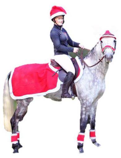 qhp-red-christmas-cap, 10.59 EUR @ miscota-fr
