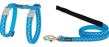 Poitrail-Sangle Chat Style Étoile Blanche et Turquoise Red Dingo