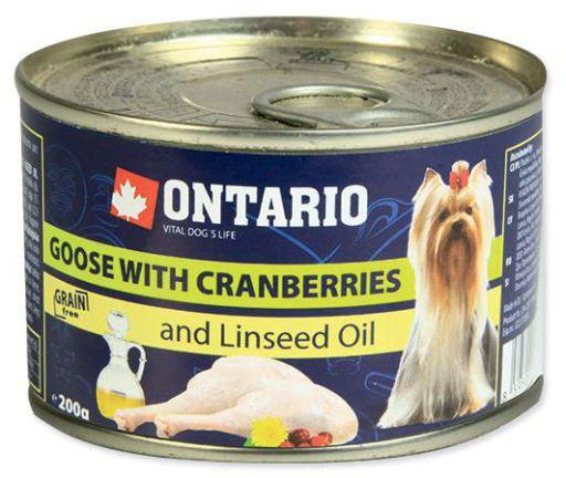 Mini Oie Myrtilles et Lin 200 GR Ontario
