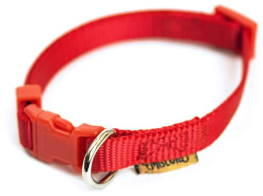 Collar de Nylon Rojo para Perros