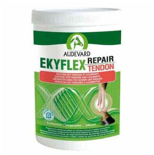 Ekyflex Tendon 1.2 kg Audevard