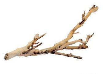Branches Naturels Forest Branch 45 cm Exo Terra