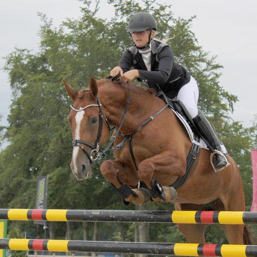 Ridingbreeches Adult 38 QHP