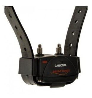 Canicom Extra Collier Jaune Num'axes