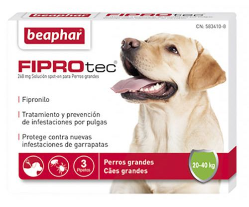 Beaphar fiprotec Combo Pack of 3/Pipettes for Large Dogs Flea//Tick