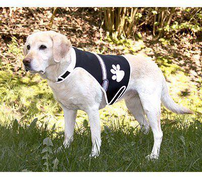 trixie-gilet-pour-chien-flash-avec-usb-l-400-gr